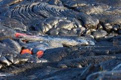 Lava flow. On Big Island, Hawaii Royalty Free Stock Photo