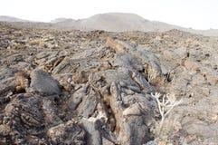 Lava Flow Foto de archivo