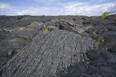 Lava Flow 9824 Royalty Free Stock Photos