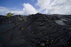 Lava Flow 9828 Stock Photo