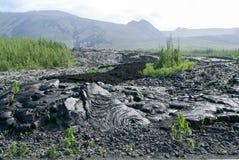 Lava flow of La Reunion Island on Indian Ocean Stock Images