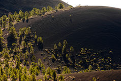 Lava flows and cinder cone Royalty Free Stock Images