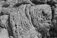 Lava formations Stock Images
