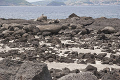 Lava landscape Royalty Free Stock Photo