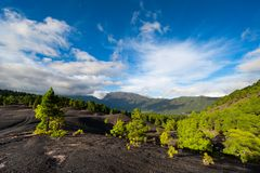 Lava landscape on the Cumbre Nueva in La Palma Stock Photos