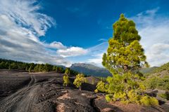 Lava landscape on the Cumbre Nueva in La Palma Stock Image