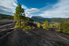 Lava landscape on the Cumbre Nueva in La Palma. Beautiful lava landscape on the Cumbre Nueva in La Palma, Canary islands, Spain Royalty Free Stock Photos
