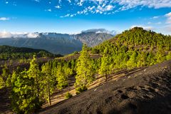 Lava Landscape On The Cumbre Nueva In La Palma Stock Photography