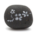 Lava pebble painting Stock Image