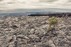 Lava prairie Royalty Free Stock Image
