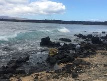 Lava rock beach Stock Images