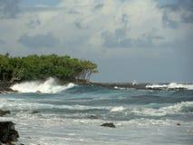 Lava Rock Cliffs e as árvores abraçam o Oceano Pacífico selvagem na ilha grande de Havaí Fotografia de Stock