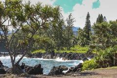 Lava rock coast on Road to Hana, Maui, Hawaii Royalty Free Stock Photo