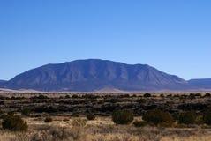 Lava Rock Field Stock Photography