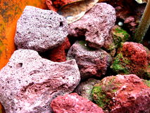 Lava Rocks. Red lava rocks with some moss growing on them Royalty Free Stock Photo
