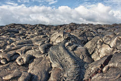 Lava rocks Stock Images
