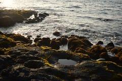 Lava Rocks Beach Stock Photo