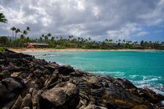Lava rocks, east end, napili bay, maui Stock Photography