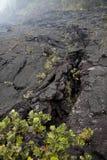 Lava-Sprünge stockbild