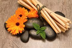 Lava stones and bamboo Stock Image