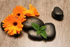 Lava stones and marigold Stock Image
