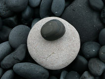 Lava stones. Lava rock on the beach. White and black rocks. round white and black stones Stock Photography