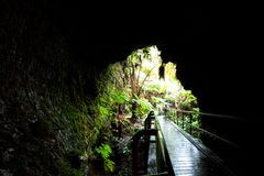Lava tube Stock Images