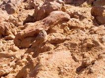 Lava vulcânica Foto de Stock