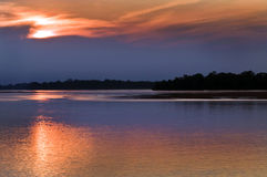 Lavabo del Amazonas Fotos de archivo