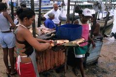 Lavabo del Amazonas Imagen de archivo