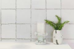 Lavabo del cuarto de baño o decoración de la naturaleza del retrete Imagen de archivo libre de regalías