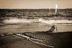Lavado de la puesta del sol de la bahía de la botánica Fotos de archivo libres de regalías