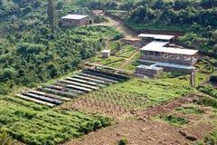 Lavado ruandés del café y estación seca imagen de archivo
