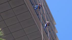 Lavadoras de ventana que cuelgan de cuerdas flojas suspendidas en edificio alto usando los enjugadores para limpiar almacen de metraje de vídeo