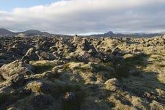 Lavafeld in der Insel stockbild