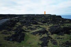 Lavafeld in Island stockbild