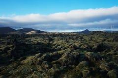 Lavafeld in Island lizenzfreie stockfotografie