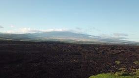 Lavafeld und Vulkan Hawaii stock footage