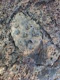 Lavafelsengesichter Mineralbeschaffenheiten in der Natur lizenzfreies stockbild