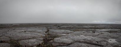 Lavafield Исландии Стоковая Фотография RF