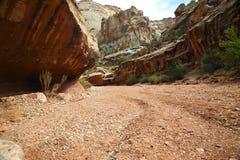 Lavage de désert photographie stock libre de droits