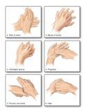 Lavage de main illustration de vecteur