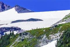 Lavage s'élevant de Muir Mount Rainier National Park de camp de premier jour Photographie stock