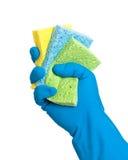 Lavagem acima das esponjas Imagens de Stock