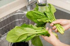 Lavagem da mulher os vegetais fotografia de stock royalty free