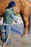 Lavagem do menino seu cavalo Fotos de Stock