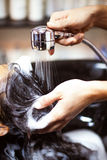 Lavaggio dei capelli Fotografie Stock