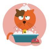 Lavaggio rosso del gatto Fotografia Stock