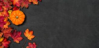 Lavagna con il fogliame di autunno e una zucca Fotografia Stock Libera da Diritti