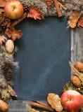 Lavagna nel telaio dei fiori e delle mele secchi Fotografie Stock